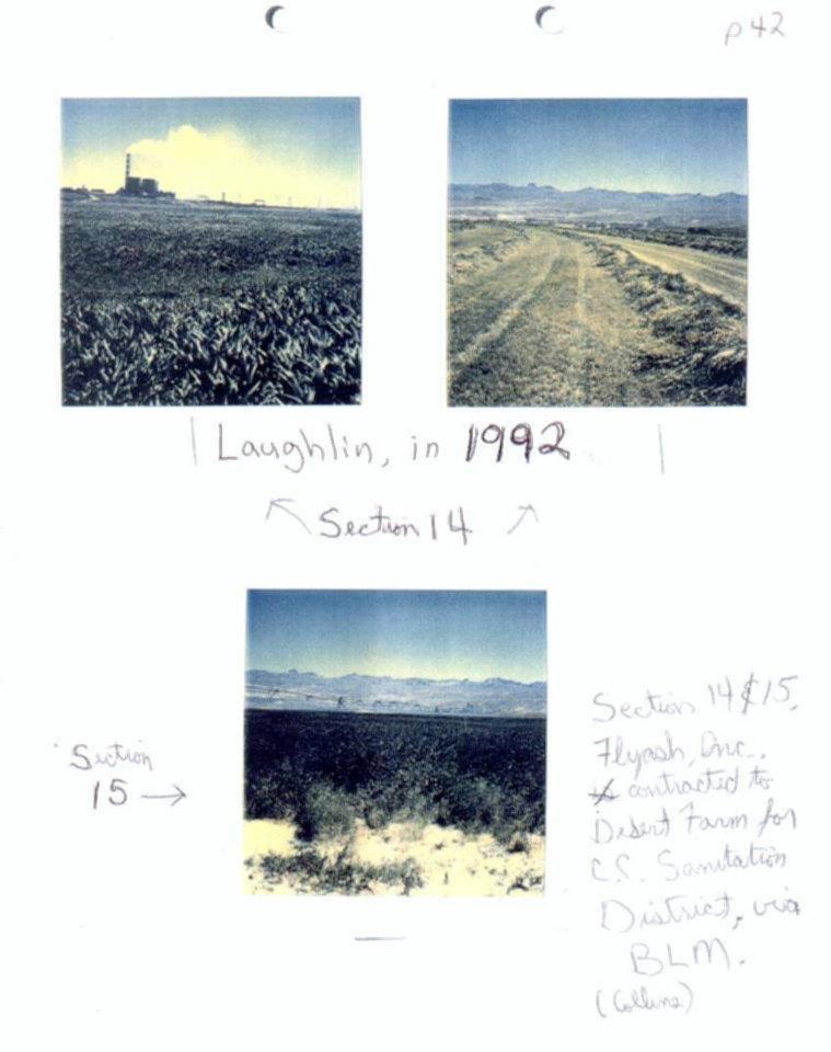 Laughlin 1992.jpg