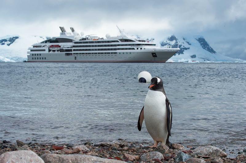 Cruise Ponant to Antarctica. Formal night optional.