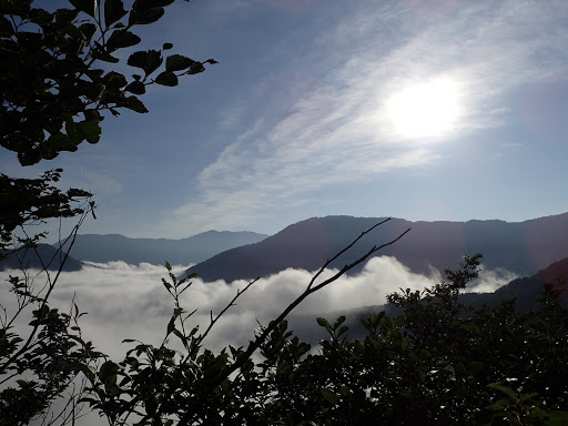 雲海の上に