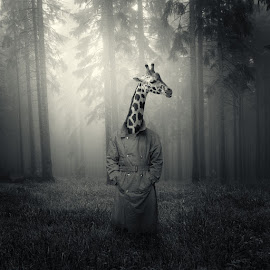 by Michal Giedrojc - Digital Art Animals ( cover, surreal, art, dream )