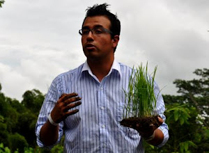 Photo: Jorge Acosta discussing transplanting rice at the First Latin American Workshop on SRI [photo by Erika Styger]