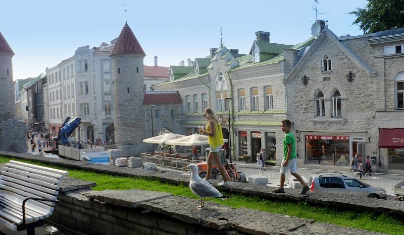 Centro storico,Tallinn. di bereza
