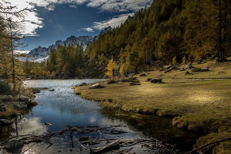 Il lago delle streghe di Concetta Caracciolo