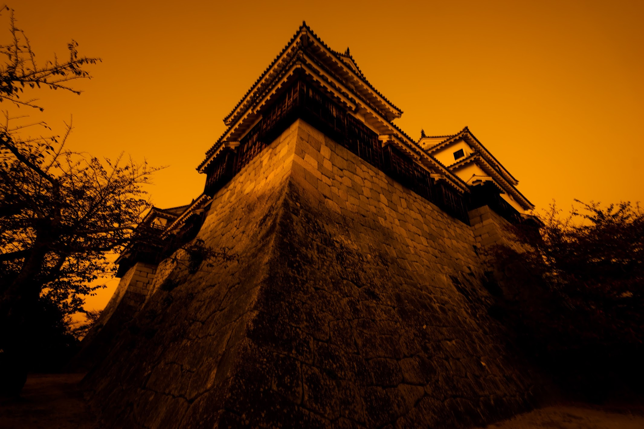 Matsuyama Castle evening view5