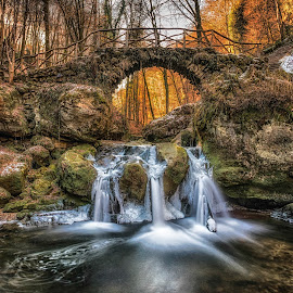 Schiessentümpel by Christian Kieffer - Landscapes Waterscapes ( water, orange, autumn, forest, landscape, sun )