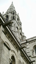 Photo: Gargoyles on St. Finbars Cathedral