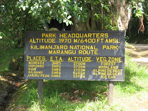 Photo: The Marangu Route (= our descent route)