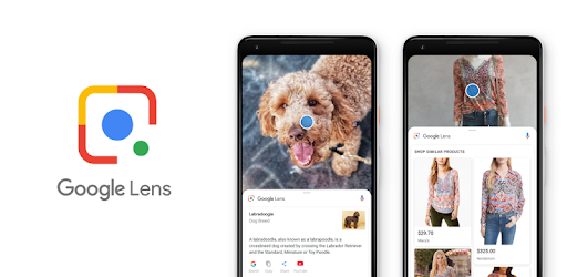 Google Lens From Play Store