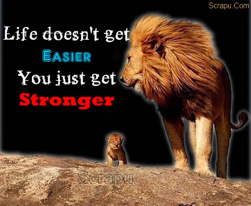 Life  It is not the Life that gets Easier, but its You who just get Stronger.