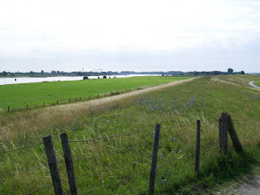 Photo: 1e Dag, donderdag 16 juli 2009 Duiven - Meerbush ,Dag afstand: 105 Totaal gereden : 106 km. Rijndijk bij Millingen