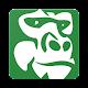 Green Gorillas Download on Windows