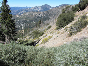 Photo: View west into the upper reaches of Soldier Creek with Twin Peaks East Peak on horizon