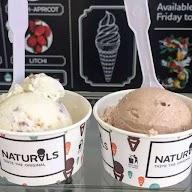 Naturals Ice Cream photo 1
