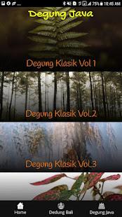 Download Degung Bali For PC Windows and Mac apk screenshot 2