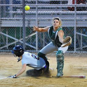 Safe by Tom Vogt - Sports & Fitness Baseball ( catcher, softball )