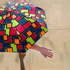 Umbrellas in Fashion  by Oscar Salinas - Uncategorized All Uncategorized (  )