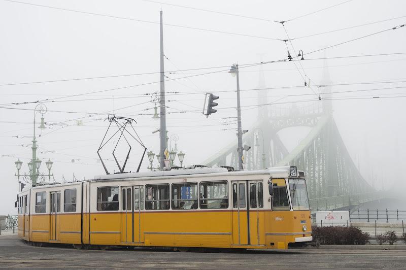 Ponte Regina Margherita Budapest di teo85