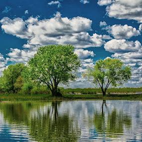 by Bruce Thiel - Landscapes Waterscapes (  )