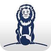 Lions Bridge FA