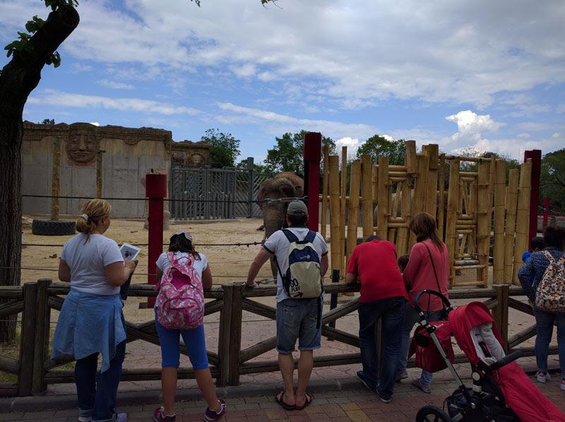 Zoo Acuario de Madrid