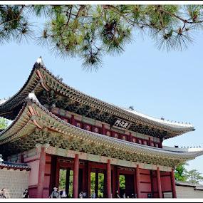 Palace by Gopichand Kokirkar - Landscapes Caves & Formations ( nature, sigma, uae, nikon, landscape, korea,  )