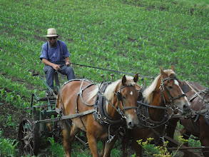 """Photo: La Crosse WI to Portage WI Amish farmer plowing fields stops to talk to us. We explain we are cycling to raise money for WWP. Wants to know if we would cycle to raise money for """"Decline the line"""" to stop power company from running new 345 volt line through area."""
