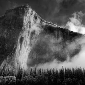 El Capitan by Chris Sargent - Landscapes Mountains & Hills ( dawn, yosemite, black and white, el capitan, mist )
