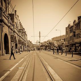 Harmonious Day by Vesna  Podkrajac - City,  Street & Park  Markets & Shops ( tram line, traveling, vesna podkrajac, sydney's history., extreme depth of field, australia, lines, sydney )