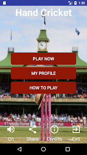 Hand Cricket Pro - náhled