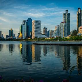 City Park Lake View by Toni Laird - City,  Street & Park  City Parks ( skyline, park, lake, city )
