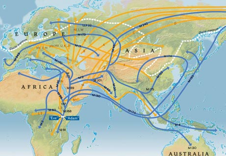 Early human migratory patterns, originating in Africa and spreading to Eurasia and the Middle East