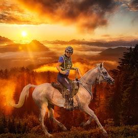 Sunset Ride by Sarah Sullivan - Digital Art Places