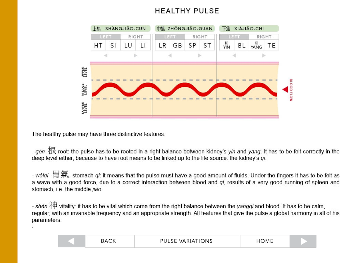 The Classic Pulses of Chinese Medicine- screenshot