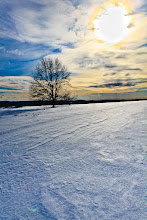 Photo: Heavy winter walk...  #winter #landscapephotography #snow