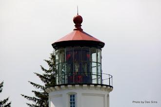 Photo: (Year 2) Day 353 -  Umpqua Lighthouse Gift Shop #3