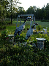 Photo: Cranes made by Anne's mother