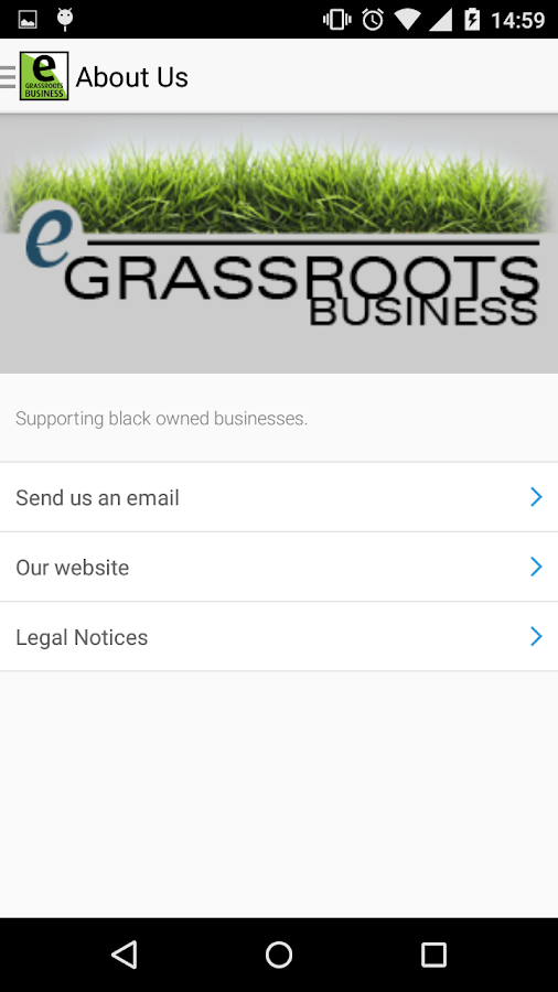 Egrassrootsbusiness.com- screenshot