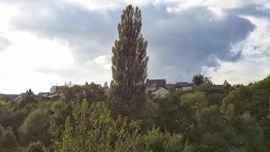 Photo: Blick von der Kiefernstraße etwas oberhalb der Kuhlestraße den Kuhlerkamp aufwärts.