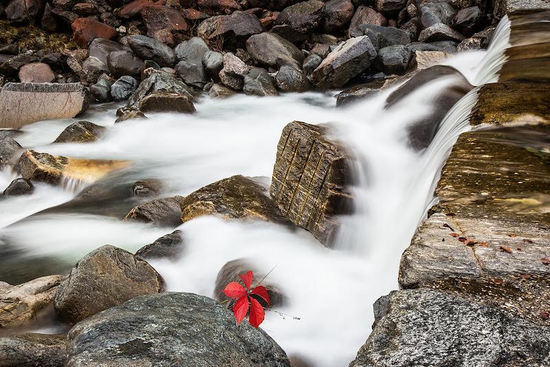 autunno sul torrente di angart71