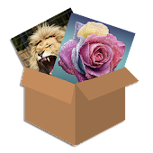 Puzzle Box: jigsaw puzzle