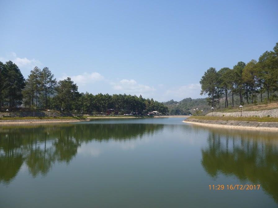 Mộc Châu khu sinh thái Rừng Thông