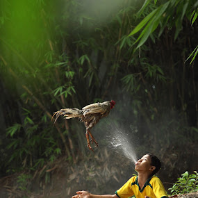 giving the rooster a morning shower by Steven Tessy - Babies & Children Children Candids