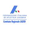 com.app.fidallazio
