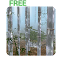 Bamboo Forest 3D LWP Free icon