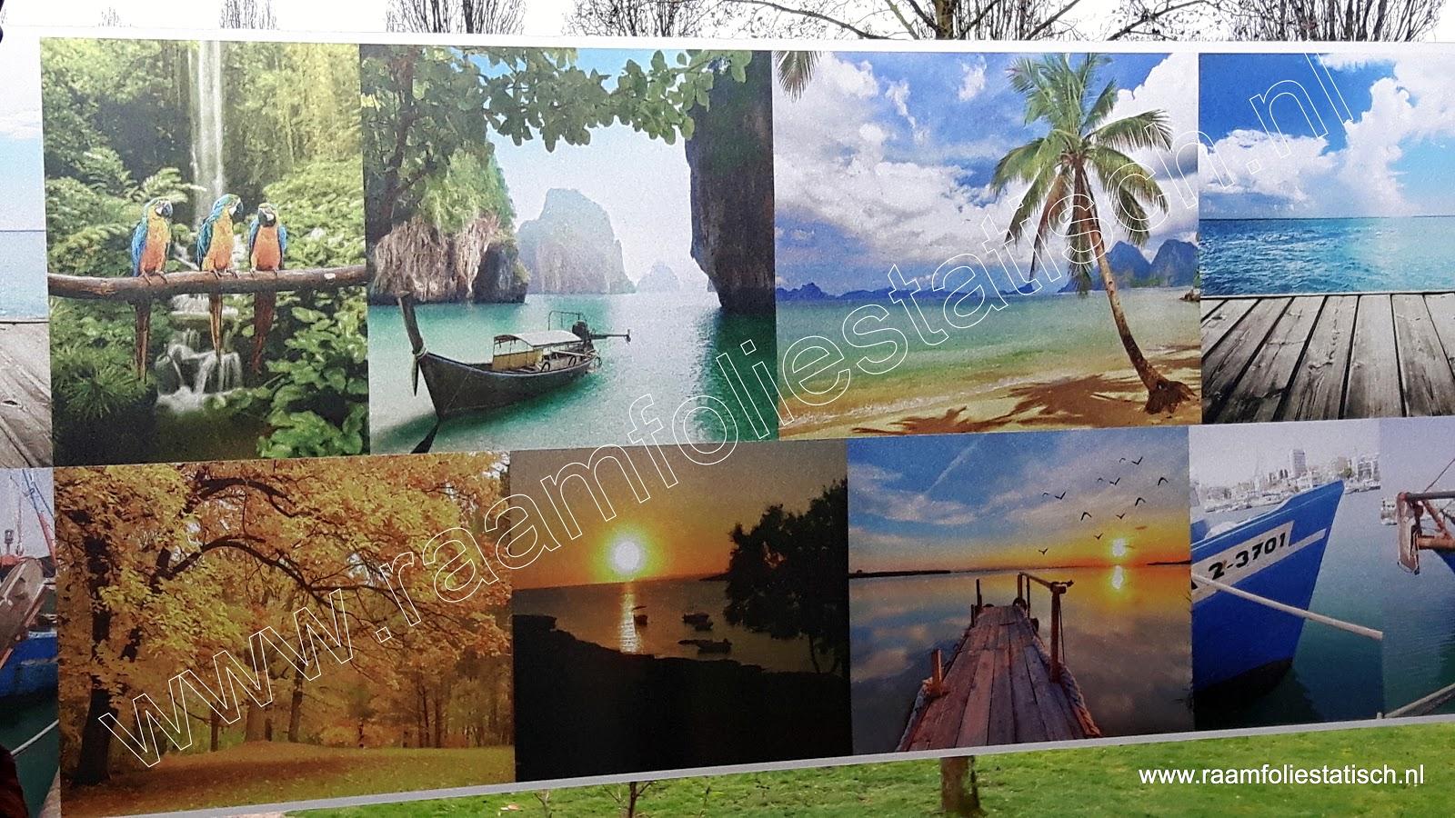 Statische raamfolie fotoprints kleuren natuur/aarde