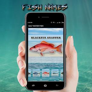 FISH NAMES 2
