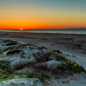 Morning has broken by John Chitty - Landscapes Beaches ( texas, beach, sunrise, galveston, morning )