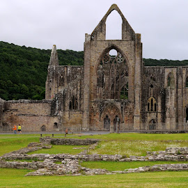 Ruins of Tintern by DJ Cockburn - Buildings & Architecture Public & Historical ( tintern abbey, religious, tintern, wye valley, britain, cistercian, exterior, wales, remains, monmouthshire, ancient, building, stone, masonry, monastery, uk, ruins, christian, archaeology, catholic, window, mediaeval, wall, architecture )
