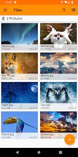 App Fennec File Manager APK for Windows Phone
