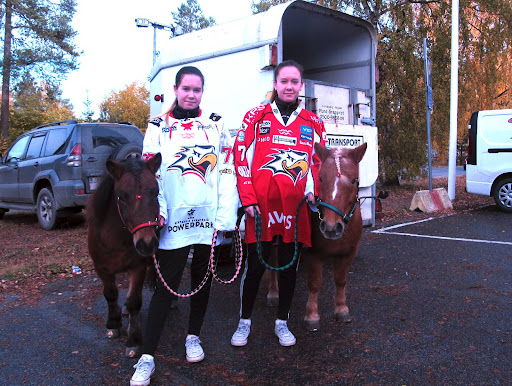 Kiekkopäivän suosituin oheistapahtuma! Paavolan siskokset, Heidi ja Henna tunnustivat väriä shettisponiensa Rummelin ja Ponikujan Melindan kanssa